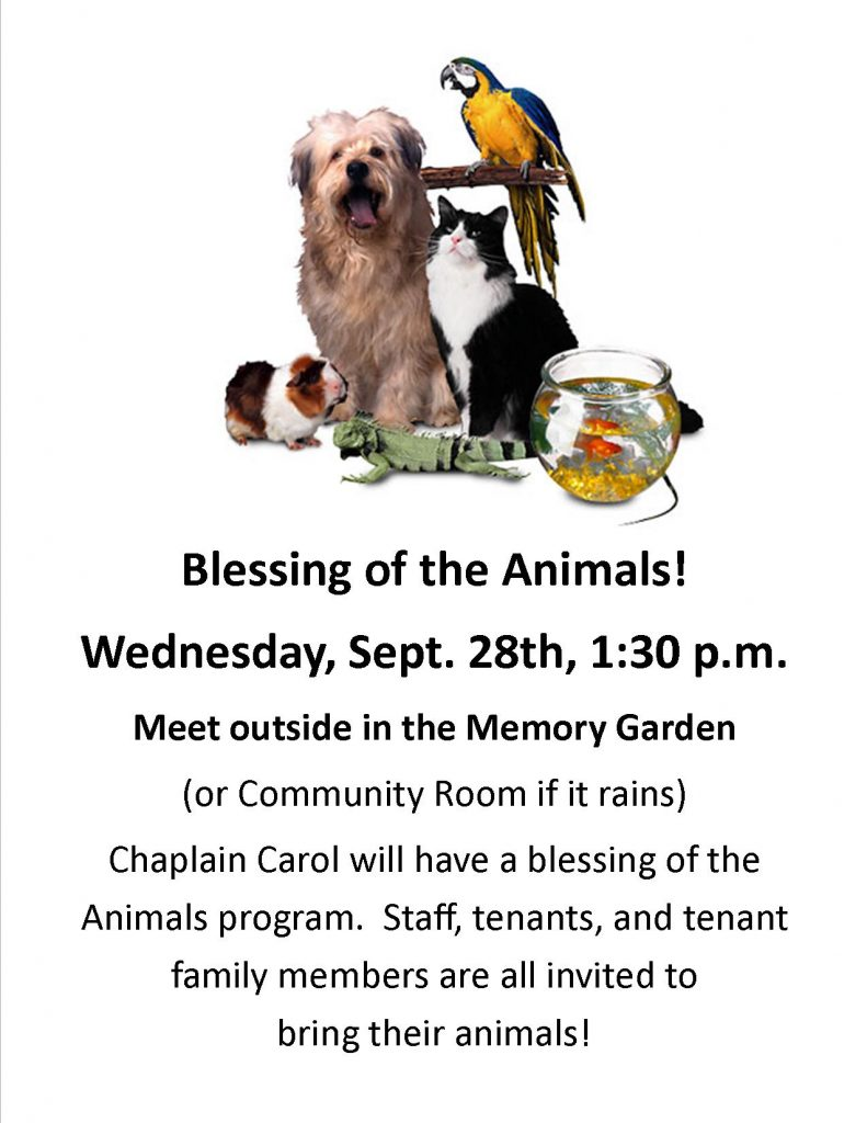 blessing-of-animals